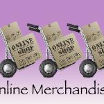 An Insight Into Online Merchandising.