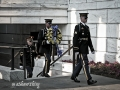 Arlington Honor Guard